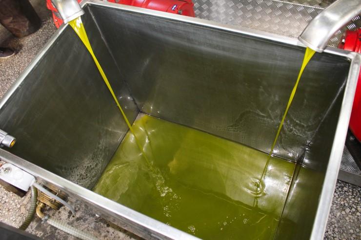 Cosa si intende per spremitura a freddo dell'olio di oliva